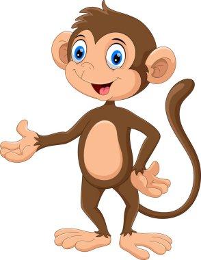 Cute monkey cartoon isolated on white background