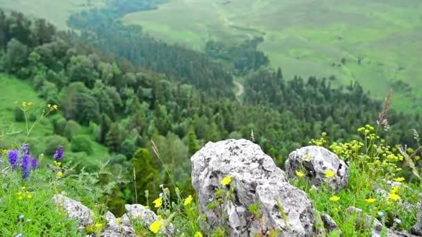 Scenic view of mountain meadow on Lago-Naki