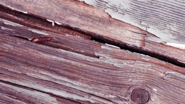 Dveřní panel z natřeného dřeva, venkovského domu v Itálii, narušený, opotřebovaný a zabarvený časem a špatným počasím.