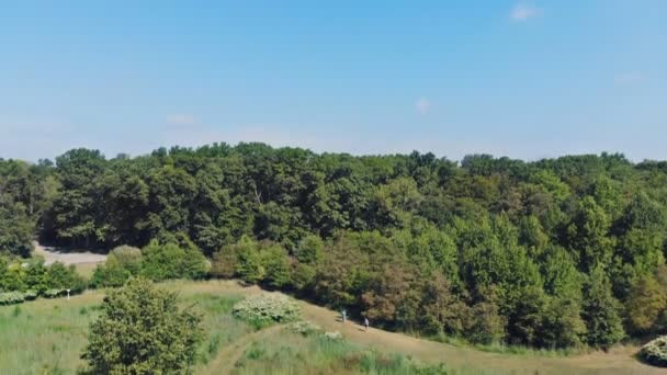 View From Drone Above Trees At Park And Woods Suburbs With Blue Sky