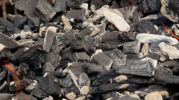 Kokosové pálení žhavými uhlíky