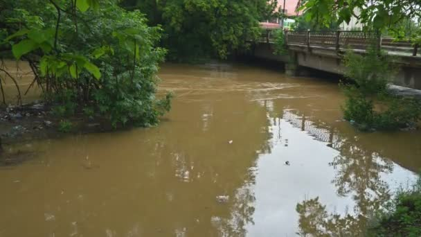 Muddy water from the river of the flooding branches, pieces of wood clinging in the bridge