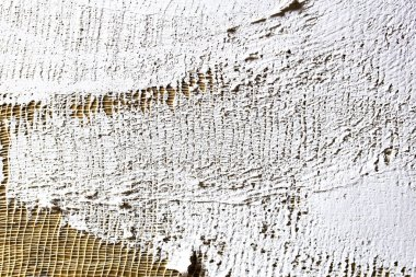 smear the soil on the canvas. texture for artists