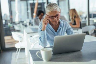 Mature businesswoman working on her computer