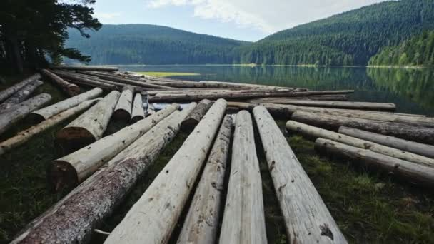 Panning over logs on the shore of a mountain lake