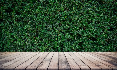 wooden planks on floor and growing green leaves on bush