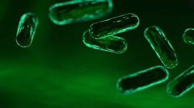 Green bacteria. 3D rendering