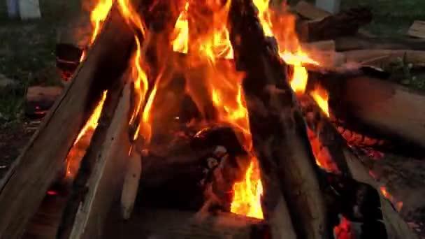 Uzavřete ohnivé plameny táborového ohně, super pomalý pohyb palivové dřevo.