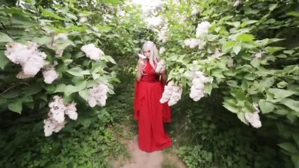 Krásná elfí dívka v červených šatech stojí v jarní zahradě mezi kvetoucími keři.
