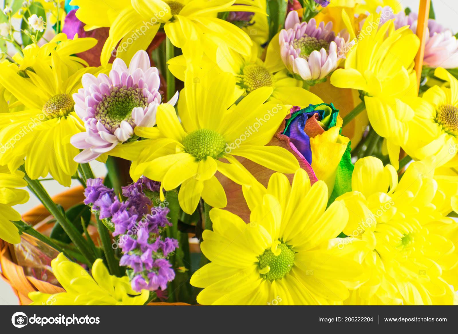 Beautiful Bouquet Chrysanthemums Flowers Yellow Chrysanthemum Multi
