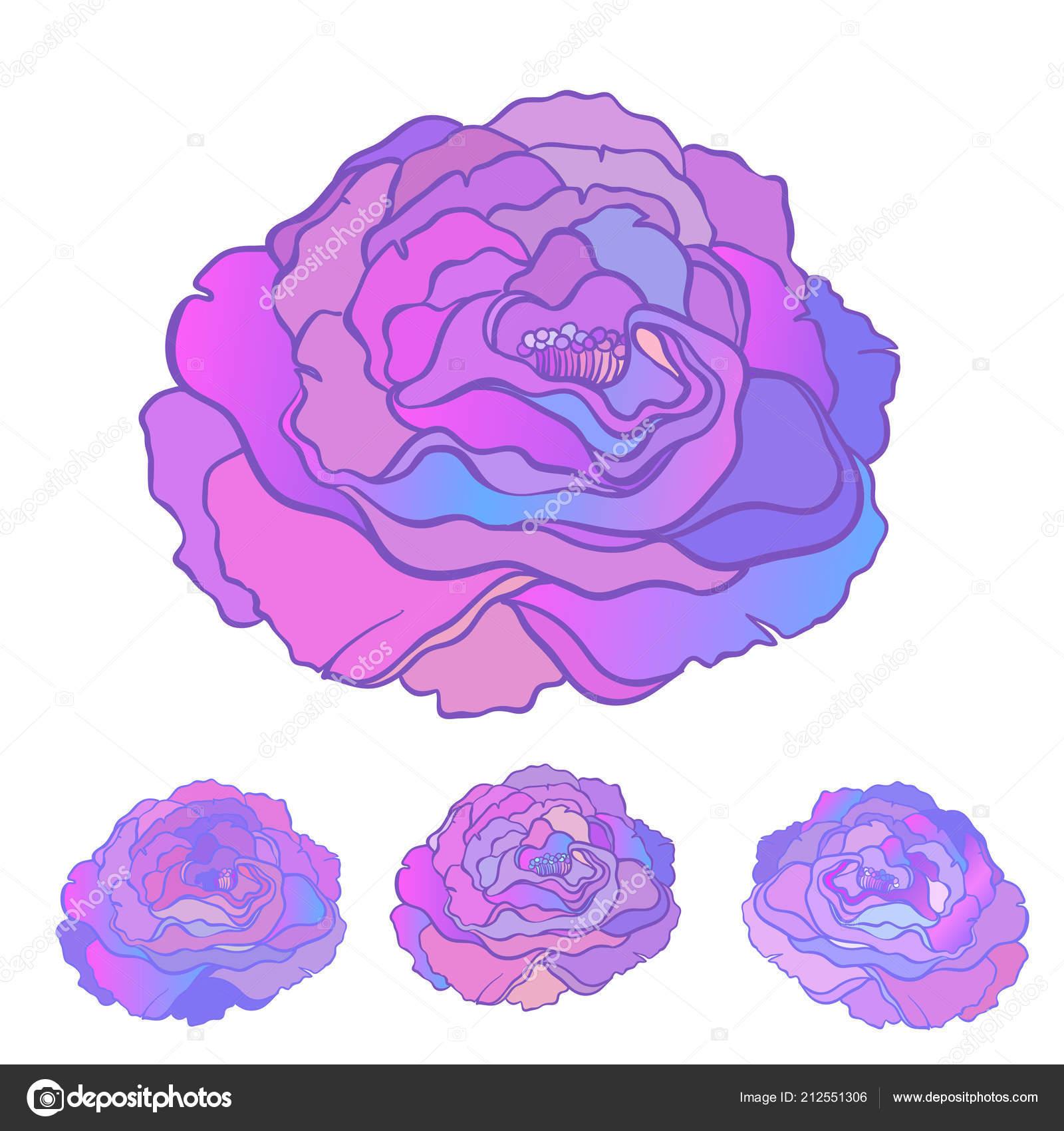 depositphotos stock illustration rose flower tattoo style isolated