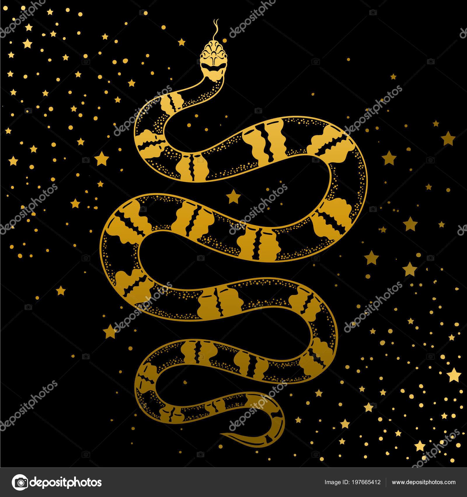 Art Tatouage Serpent Vintage Dessines Main Illustration Vectorielle