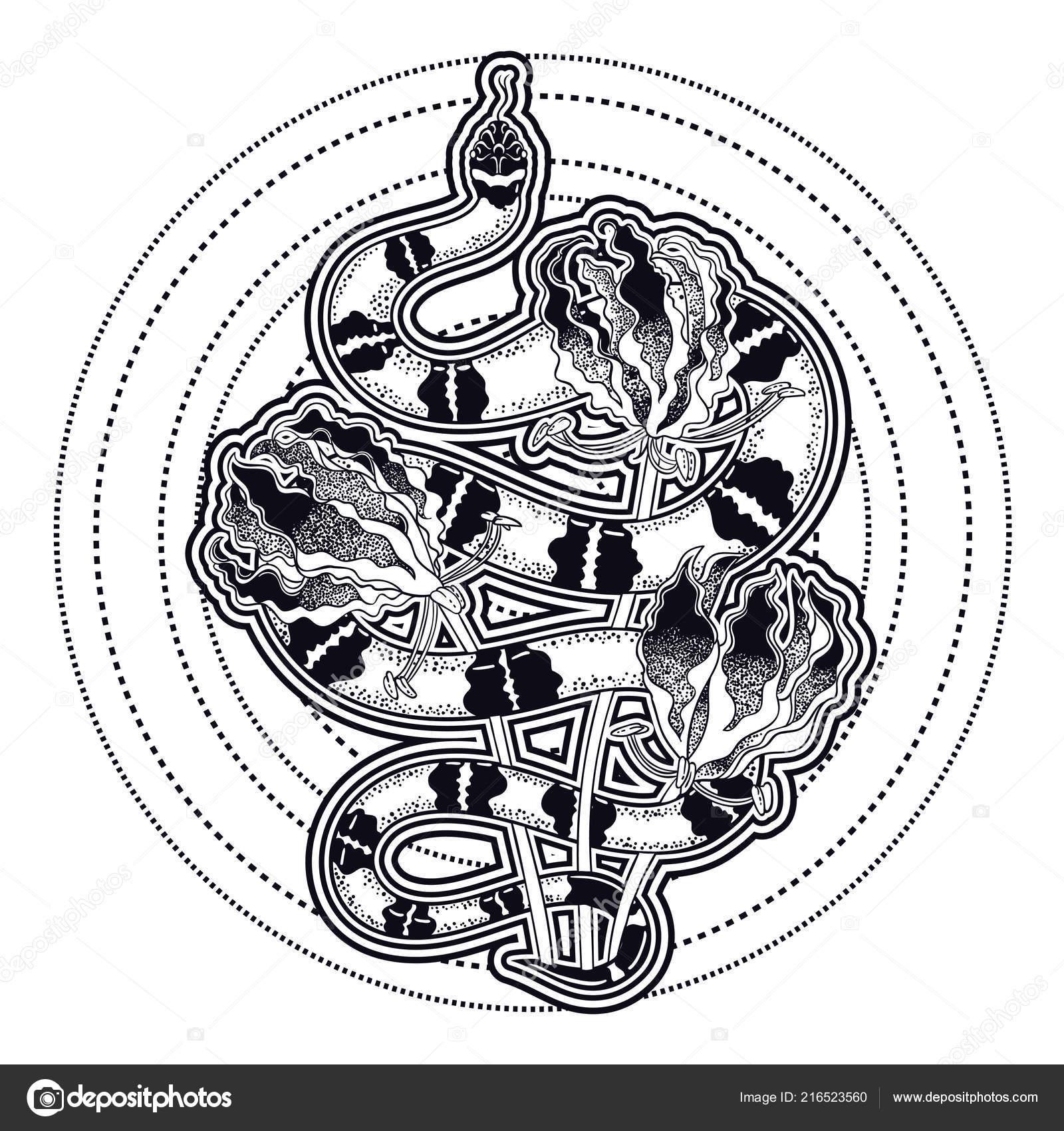 Rucne Kreslene Vintage Hadi Tetovani Umeni Vektorove Ilustrace