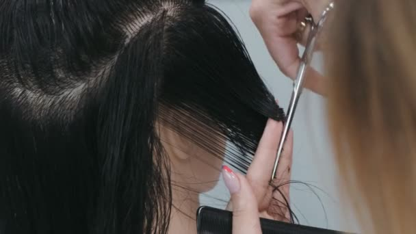 Stylista stříhání vlasů s nůžkami na hlavě figuríny, cvičení a trénink