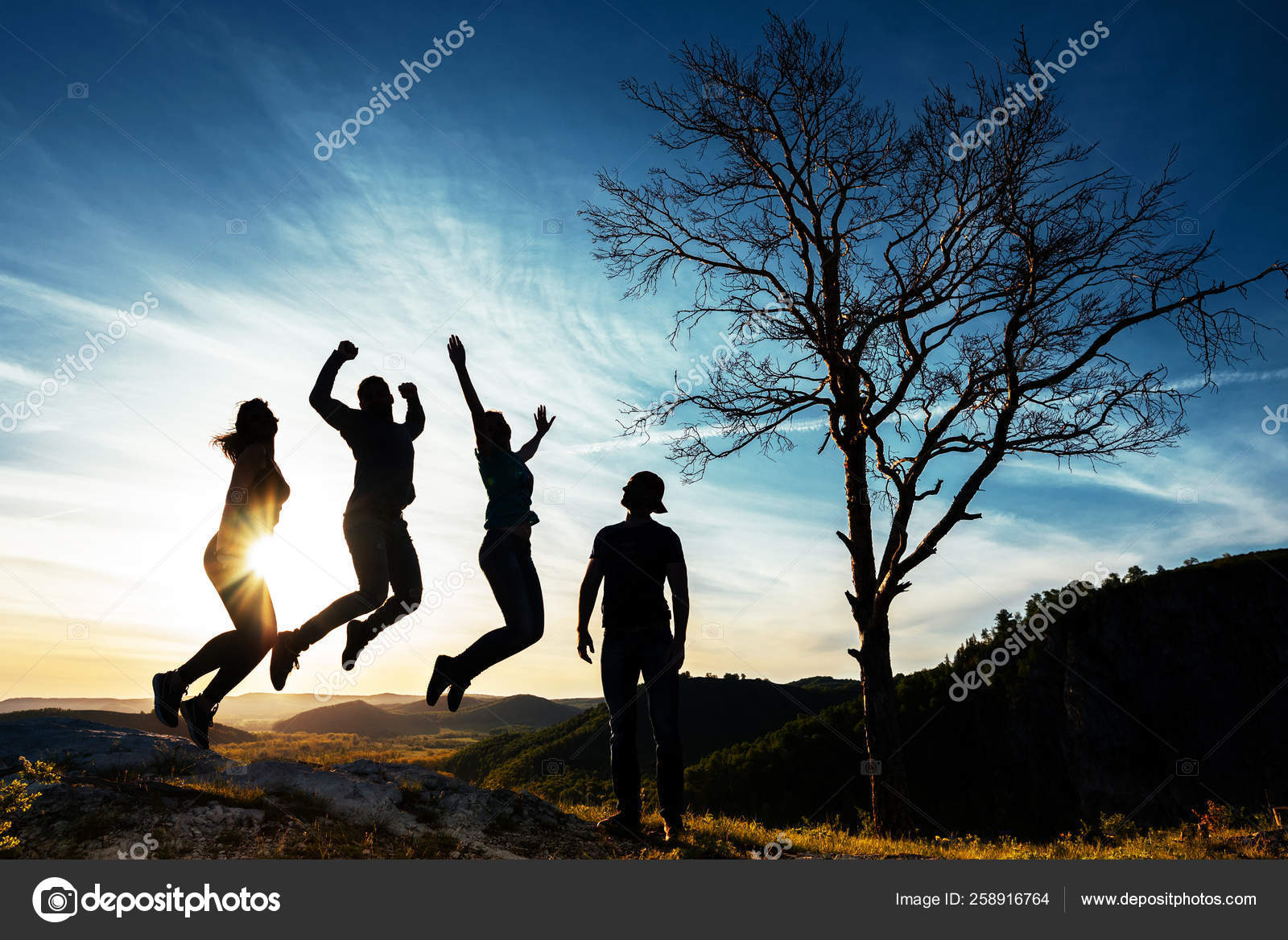 Silhouette Of People People In Jump Friends Have Fun At Sunset Funny Friends Best Friends Friends Traveling Group Of People At Sunset People Have Fun At Sunset Travelers At Sunset Stock
