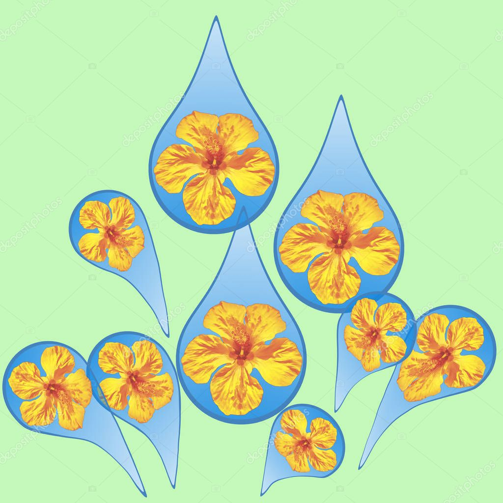 Illustration with floral elements. Rain drops pattern. Hibiscus.  Water drop, rainy element modern design for posters, wallpaper, postcard, textile and other decoration.