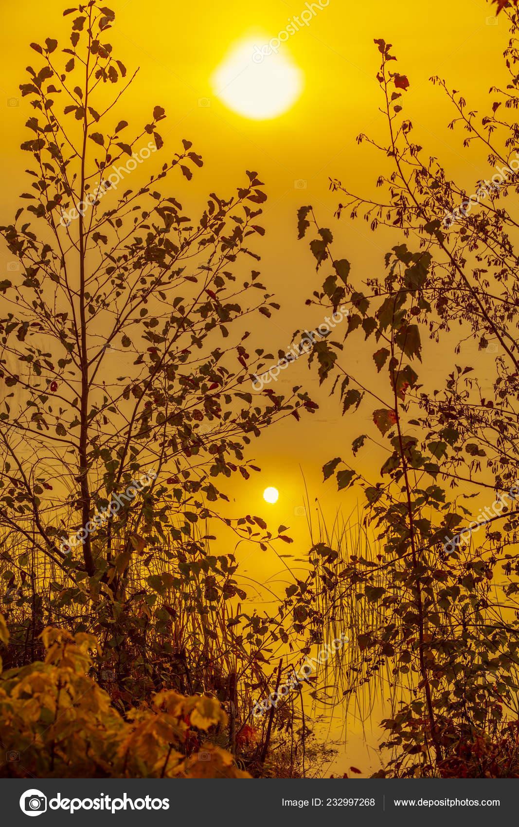 Schönen Guten Morgen Szene Landschaft See Der Nebel Frühen