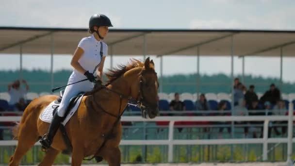 Frau reitet braunes Pferd bei Springprüfung auf Sandplatz