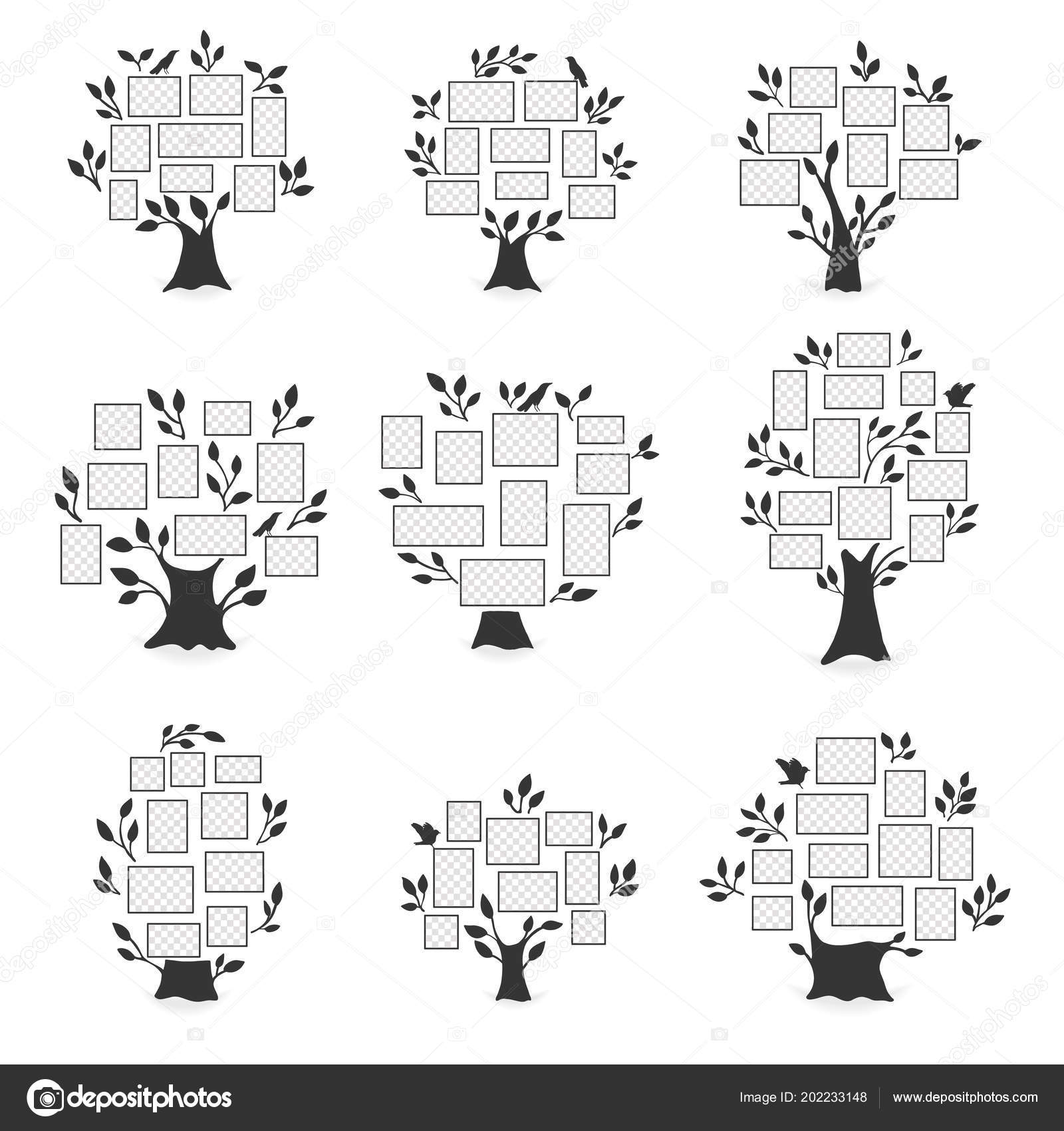 Family trees with photo frames. — Stock Vector © Liubou #202233148