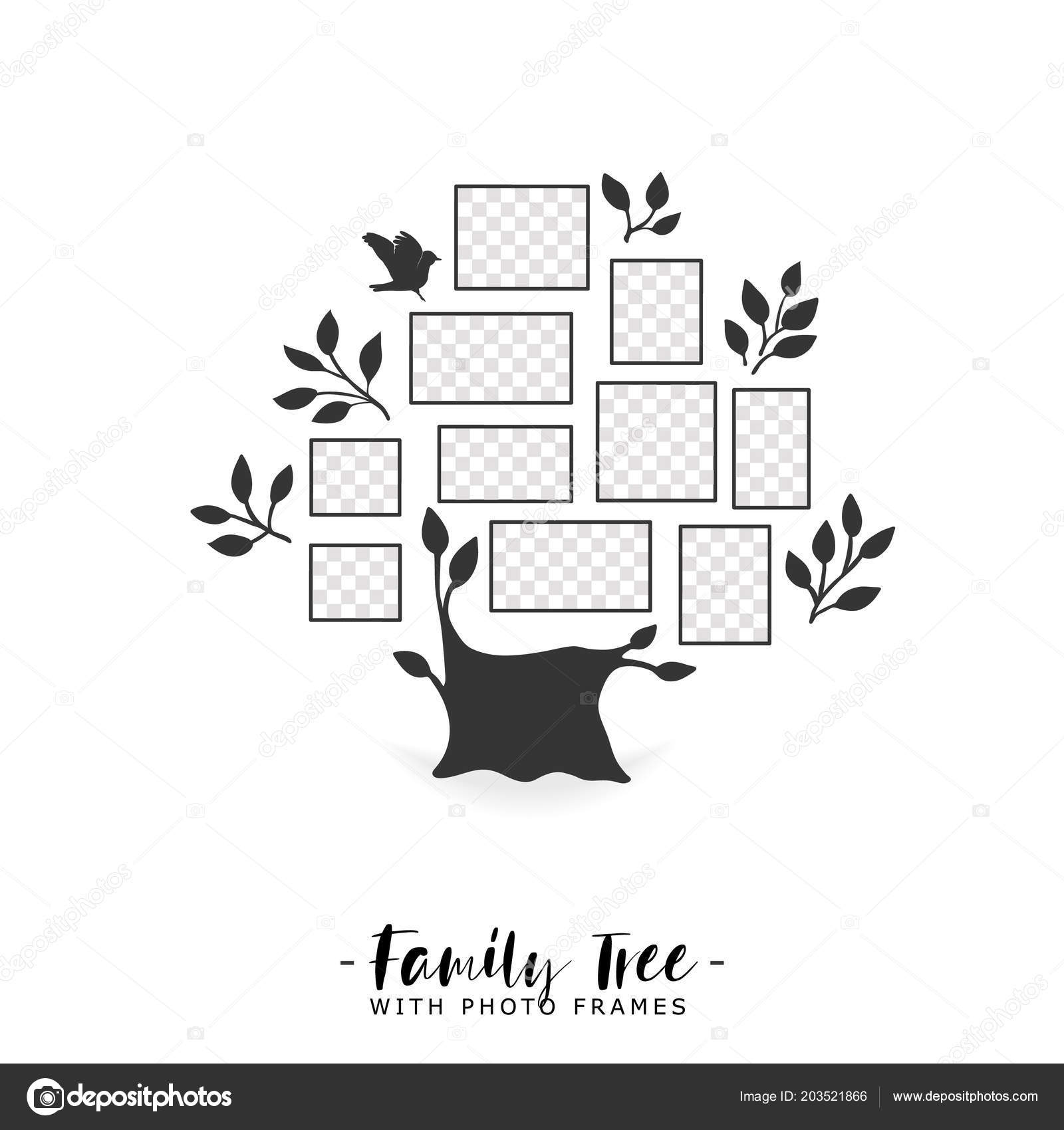 Family Tree With Photo Frames Stock Vector Liubou 203521866