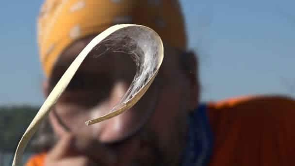 Mature man traveler on nature in morning with magnifying glass in his hand at insects. Spider Nest of thin webs close up