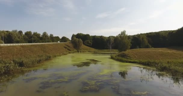 Fantastic aerial view of duckweed and algae on a forest lake with smooth surface and near the highway
