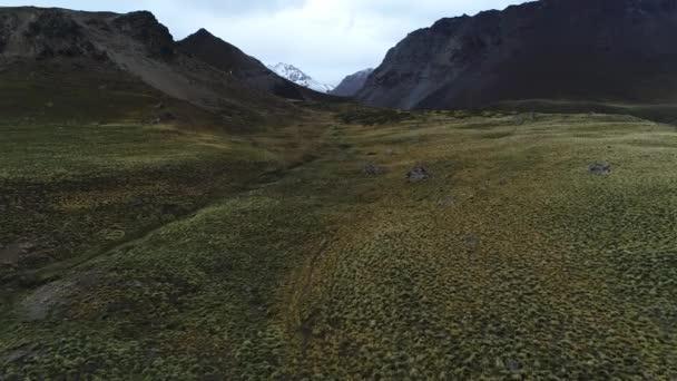 Porosty ve vysoké altiplain Domuyo sopka okolí. Letecká drone scéně směrem a v horách, zasněžené sopky na pozadí. Neuquen, Patagonie, Argentina