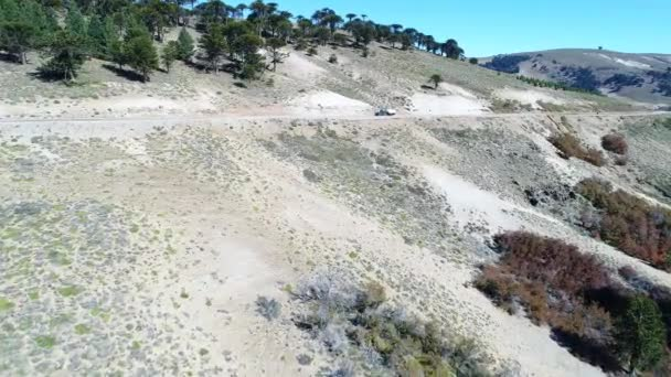 Aerial drone scene of motorhome on gravel road in Litran river valley. People walking to see the landscape. Camera travels towards from high altitude. Araucarina forest at background. Villa Pehuenia - Moquehue. Patagonia Argentina.