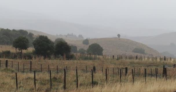 Rain in steppe landscape, in Junin de los Andes, Neuquen, Patagonia Argentina. Low clowds. Gray day. Orange golden grasses in grassland.