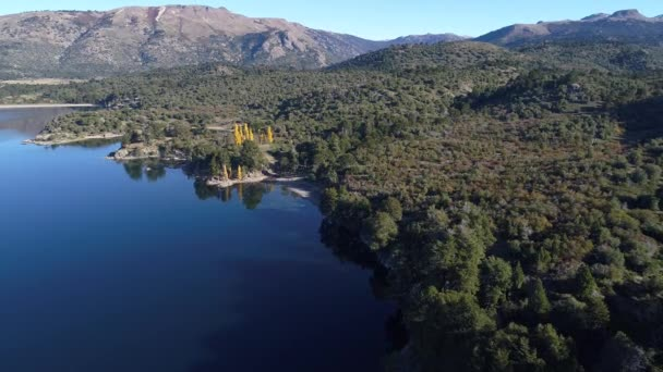 Aerial drone scene Alumine lake and woods of its coast. Camera travels above lake towards land from perspective point of view to senital arriving the woods. Area of five lagoons in villa pehuenia