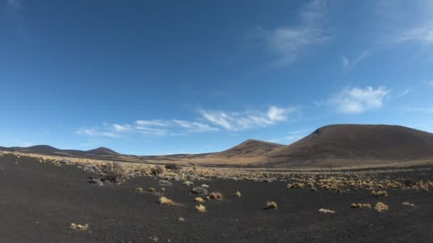 Stabilized camera movement going forward on La Payunia National Park, at Malarge, Cuyo, Mendoza, Argentina. Black and red mountains and volcanos made of lapillis volcanic rocks with golden grasses.