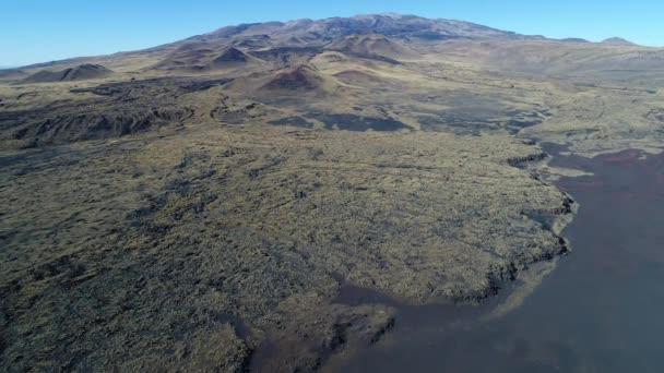 Letecká drone scéně národního parku La Payunia v Malargue, Mendoza. Pamp Negras s černou, červené pozemní skály od sopky a zlaté trávy vzor. Payun Matru sopka na pozadí. Postel z lávy