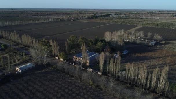 Letecká drone scéně výroby farma, pozemky, hrozny a víno, plantáž v San Rafael, Mendoza. Podzim, podzim. Fotoaparát posunuli dál. zahradnické sezóny. Západ slunce, zlaté hodiny s dlouhými stíny.