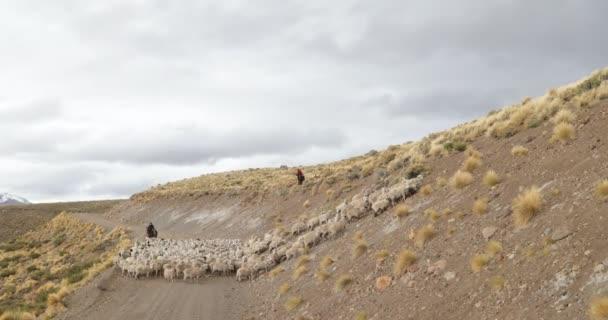 Ovce, kozy, chůzi přes štěrk, silniční a horské svahy, Gaucho, kovboji, vedení zásob zvířat k přezimování vzestupně. Trashumancia: Tradiční, kulturní přesunu zvířat do teplejších oblastí