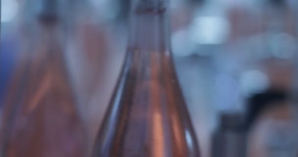 Detail moderní automat náplň růžová vína ve skleněných lahvích. Bubliny na hrdlo láhve. Nápoj, pití, průmysl. Dělení vína pro balení a poslat pryč. Mendoza, Argentina