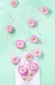 Obálka s květy a lístky na pastelově růžové pozadí