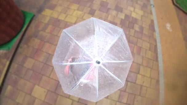 View from above. 4K. Action Camera. The woman walks under a transparent umbrella on a summer rainy day.