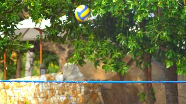 detail, míč letí přes net na pozadí tropických stromů. Lidé hrát volejbal herní cvičení žijí zdravé Sportovní životní styl