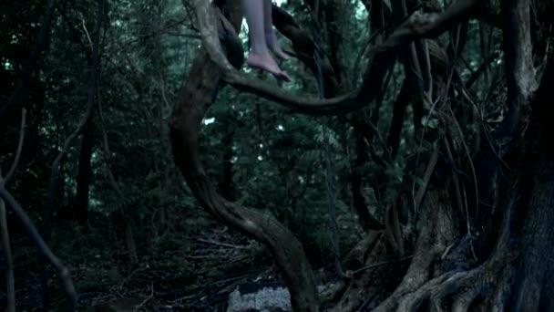 a szellem egy kislány, a tündér hosszú, Sötét haja egy vastag tündér erdőben, magas ül egy régi fa ága, amelynek gyökerei összefonódik