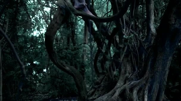 the ghost of a little girl, a fairy with long dark hair in a thick fairy forest, sits high on an old tree branch whose roots are intertwined