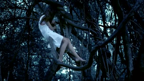 der Geist eines kleinen Mädchens, eine Fee mit langen dunklen Haaren in einem dichten Märchenwald, sitzt hoch oben auf einem alten Ast, dessen Wurzeln miteinander verflochten sind