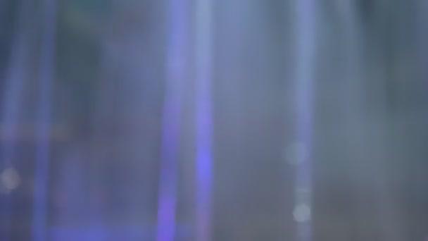 Video B283988124