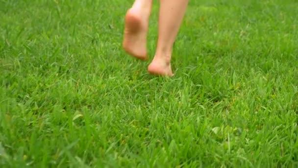 samice chodí po zelené trávě v Rosy bosou. Close-up