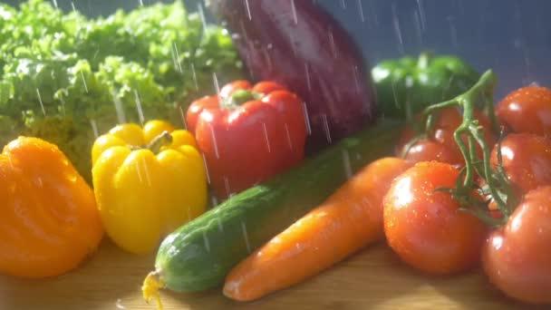Čerstvá zelenina na tmavém pozadí ve studiu pod tryskami deště. koncept podzimní sklizně