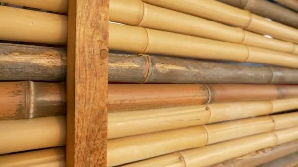 natürliche Textur Hintergrund. Bambuszaun