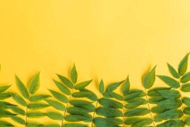 """Картина, постер, плакат, фотообои """"зеленые листья летом печать архитектура"""", артикул 273086558"""