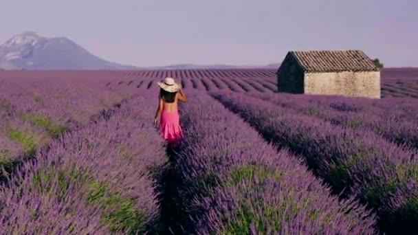 Provence, Lavender field Francie, Valensole Plateau, barevné pole Lavender Valensole Plateau, Provence, jižní Francie. Levandulové pole. Evropa. žena na dovolené na levandulových polích provence,