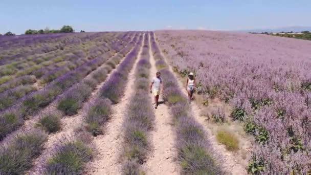 Valensole Plateau, Provence, jižní Francie. Levandulové pole při západu slunce. Provence