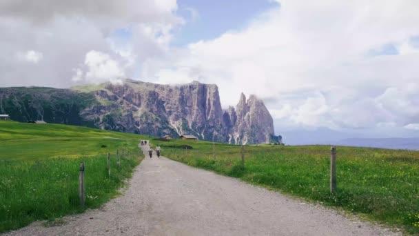 Seiser Alm - Seiser Alm mit Langkofelgruppe im Hintergrund bei Sonnenuntergang. Gelbe Frühlingsblumen und Holzchalets in den Dolomiten, Trentino-Südtirol, Italien