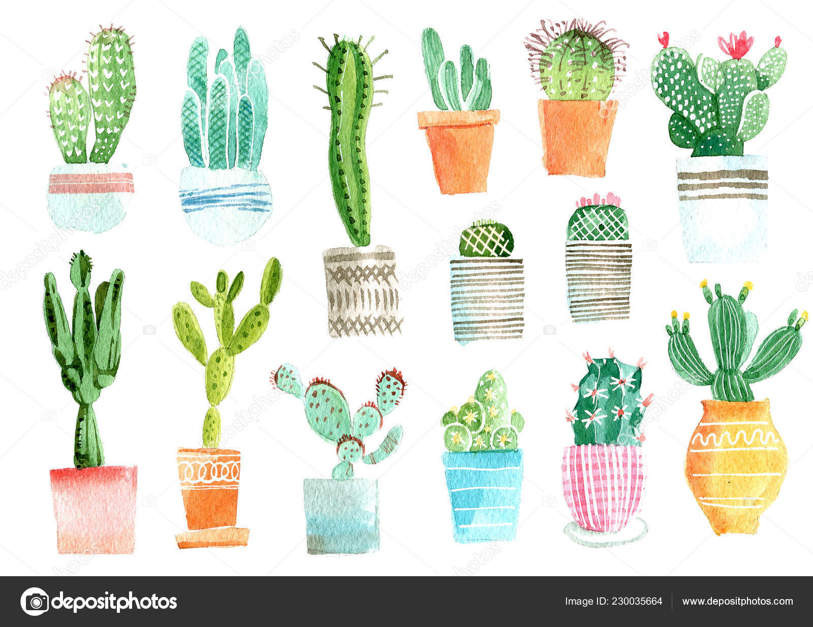 Cactus Watercolor Hand Draw Illustration Isolated White Background